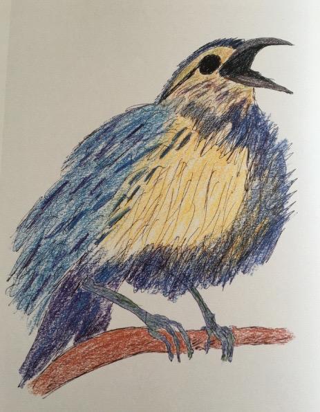mercecunninghambird