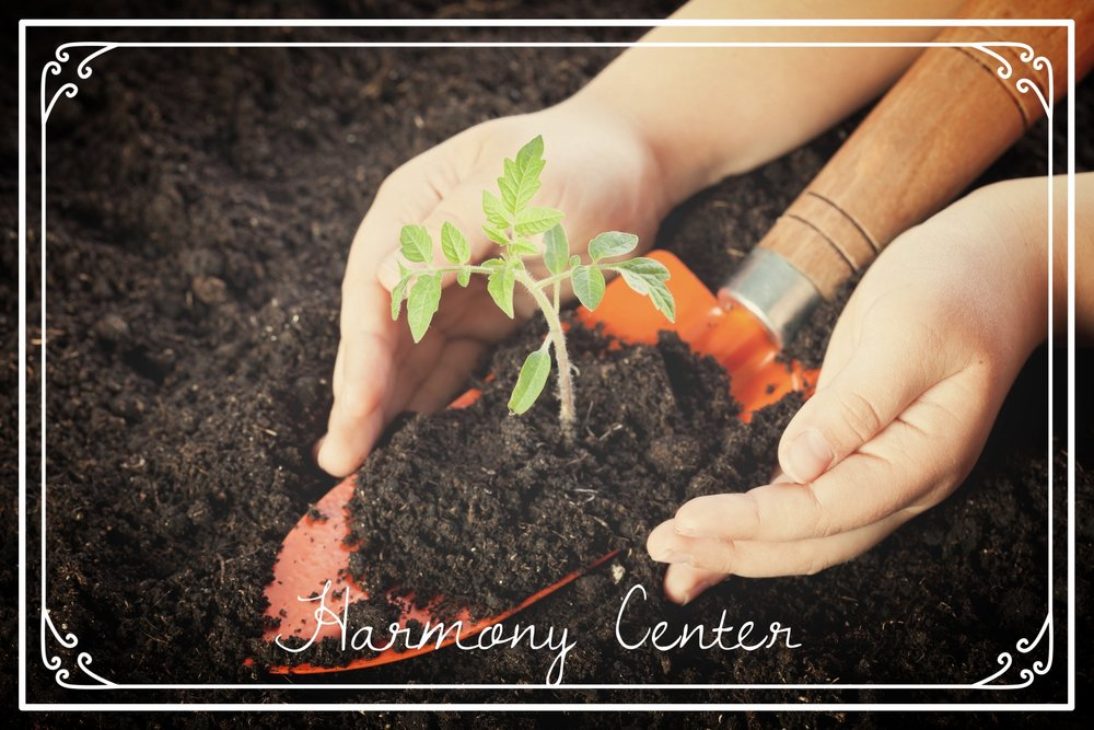 Everyone Deserves Harmony - We offer after school care that includes life skills and enrichment such as gardening, cooking, music, art, socialization, meditation and more.