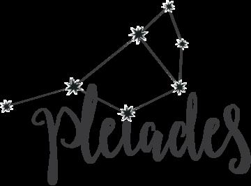 Pleiades-Web-Header_2_180x@2x.png