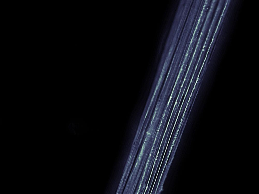 fibers17.png