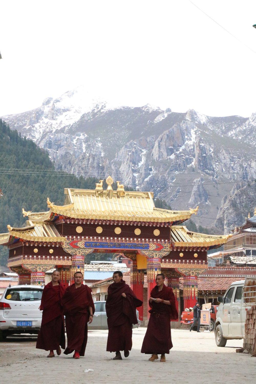 Monks walking through town.