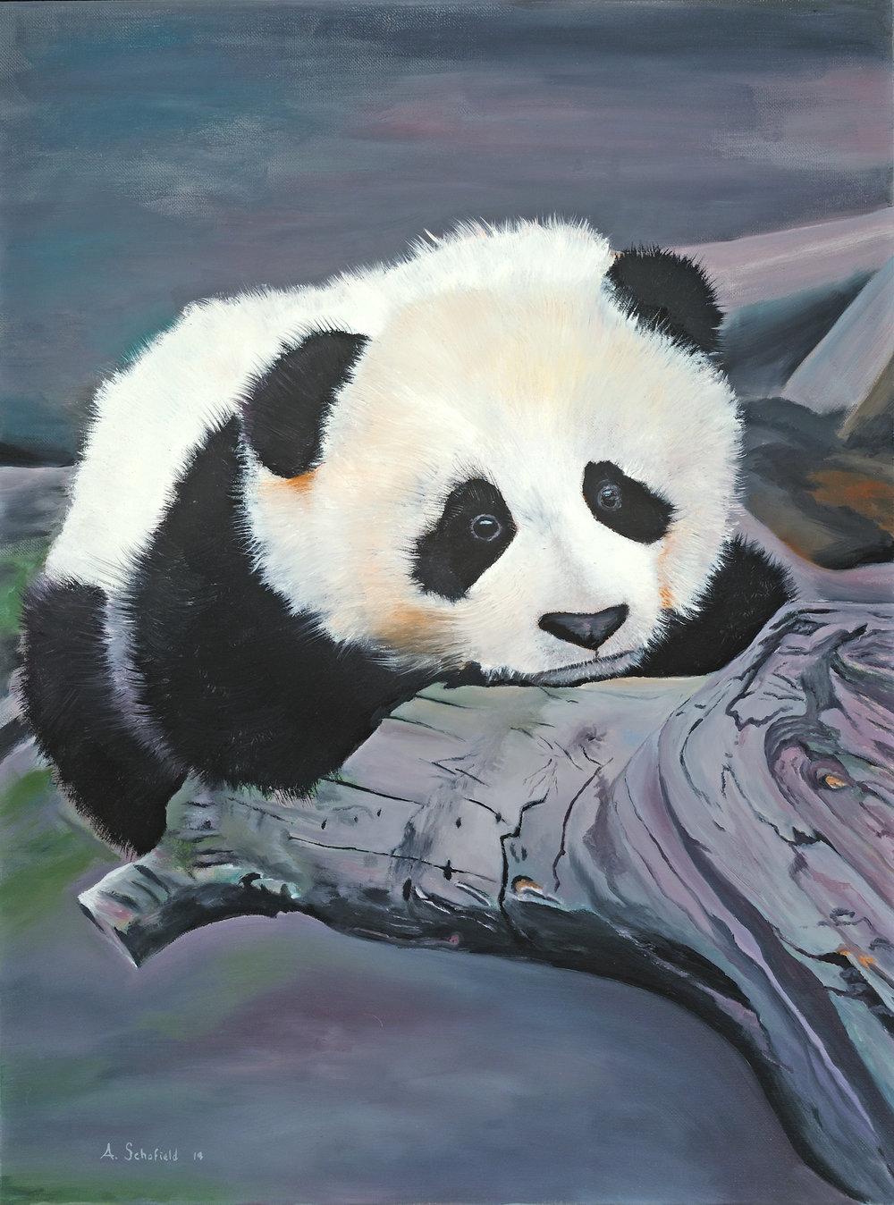 Panda, 18x24 - SOLD