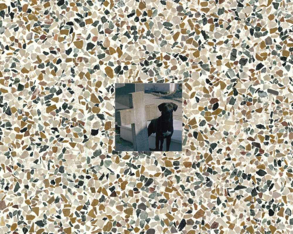 tile and dog at graveyard.JPG