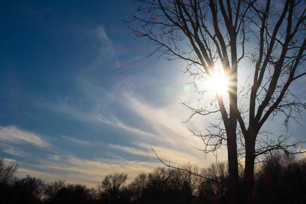 Sky and treelike with a sunburst in Lincoln, Nebraska, College View