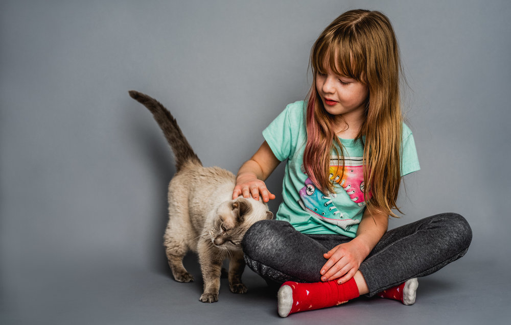 studio portrait of girl with a cat.jpg