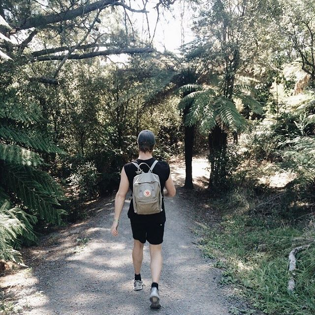A walk in the djungle ➳ New Zealand