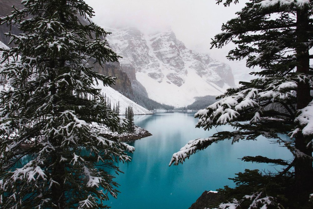 Lake Louise is the winter playground of your dreams.