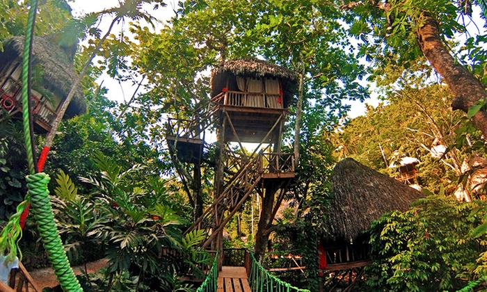 treehouse village.jpg
