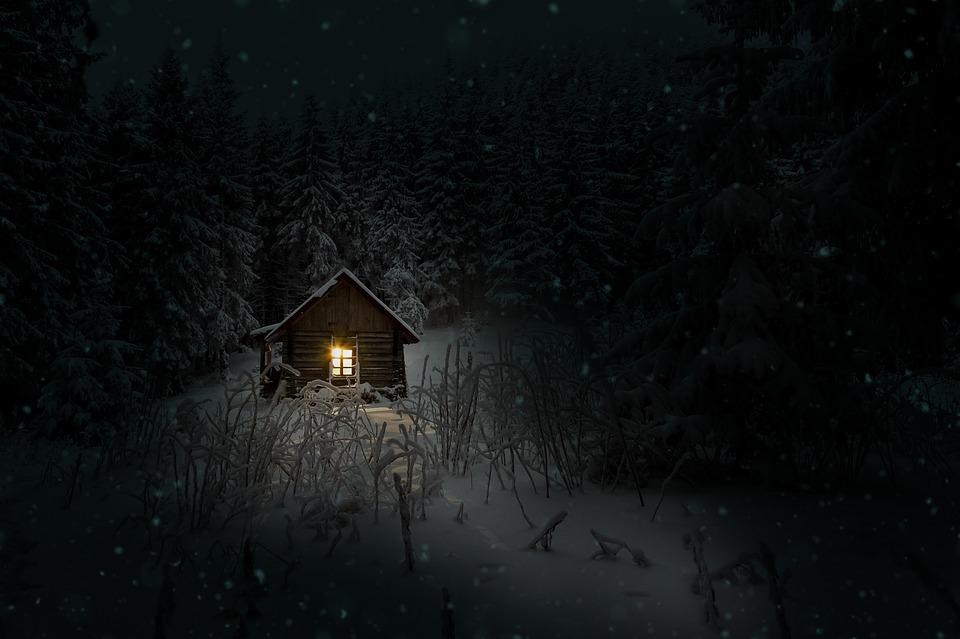 cabin2-.jpg