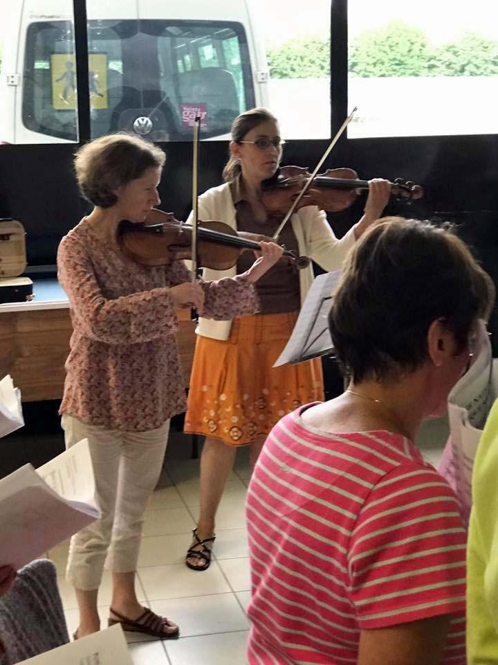 des violons .jpg