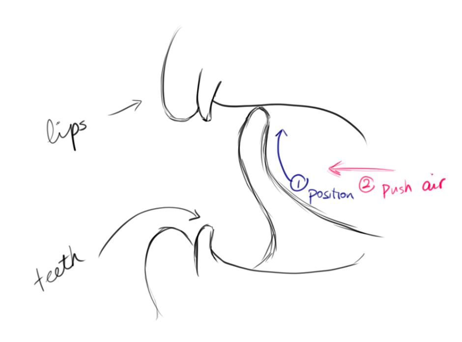 圖片翻譯:lips 嘴唇、teeth 牙齒、position 位置、push air 吹氣