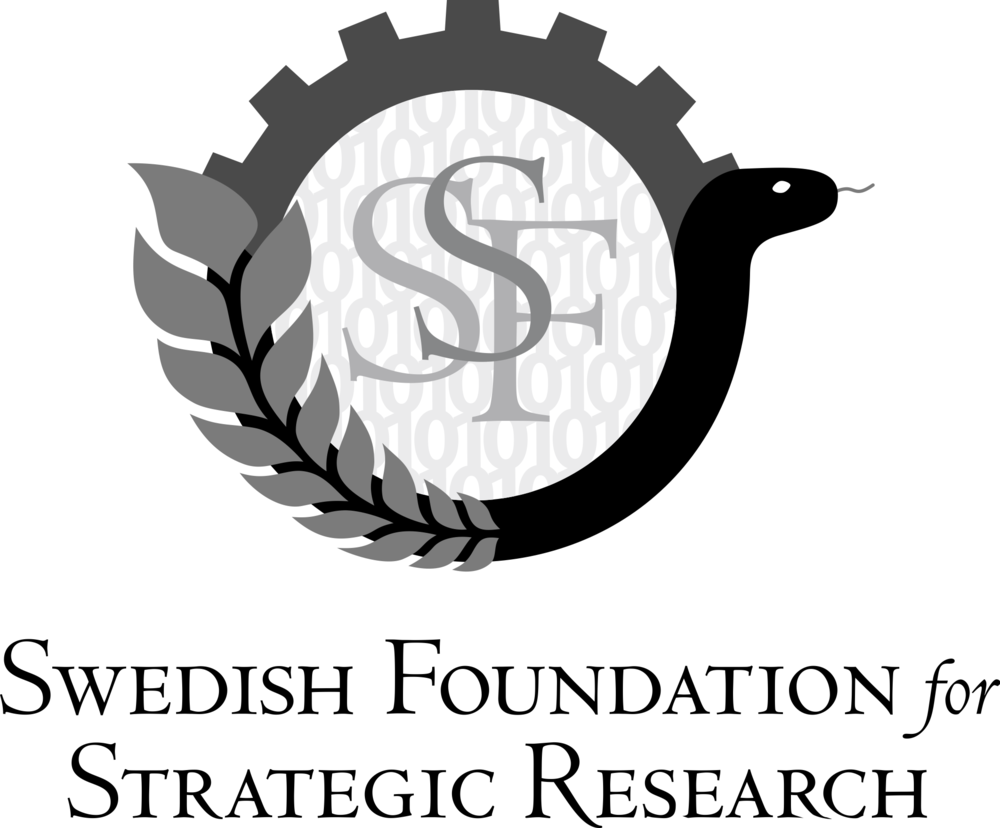 Swedish Foundation for Strategic Research / Stiftelsen för Strategisk Forskning
