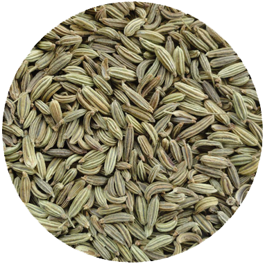 Fennel seeds  Pot Still only      Stronger in it's fennellish attitude than the delicate fennel bulb this seed provides an aniseed fine edge to the flavour profile of Hepple. Although a small contributor, it has a very complementary relationship with the other ingredients.