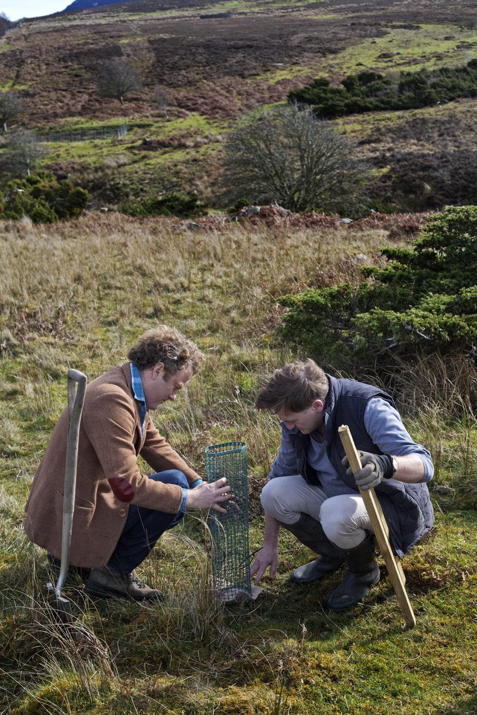 Jamie Berger and Walter Riddell planting juniper seedlings.