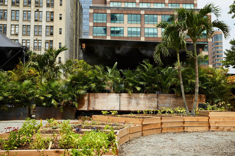 GITANO FARMS           LEARN MORE     We have built 20 raised vegetable and herb beds and growing over 50 different crops. We are partnering with local public schools to teach urban farming and nutrition. We will use the fresh produce harvested in our cooking and cocktails. Farm-to-Table in the heart of downtown NYC.