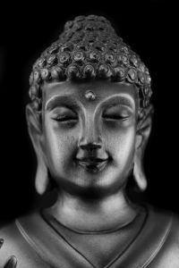buddha-935135-m