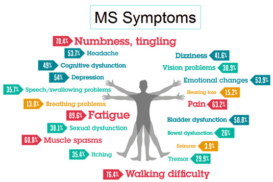 Source: http://blog.mymsaa.org/ms-management-of-cognitive-symptoms/