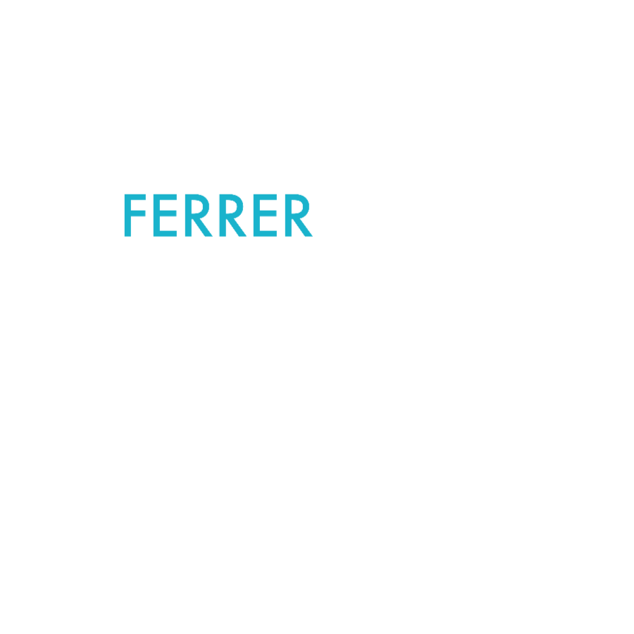 Ferrer Realty Group Miami's Private Real Estate Consulting Firm