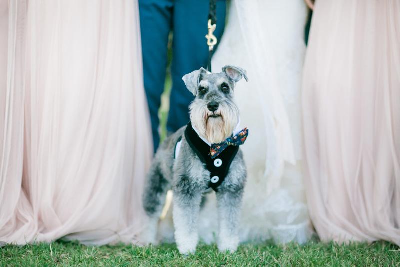 mibelleinc.com | Saddlerock Ranch Weddings | Mi Belle Photography | Malibu Wedding Photographers | Destination Photographer _ (17).jpg