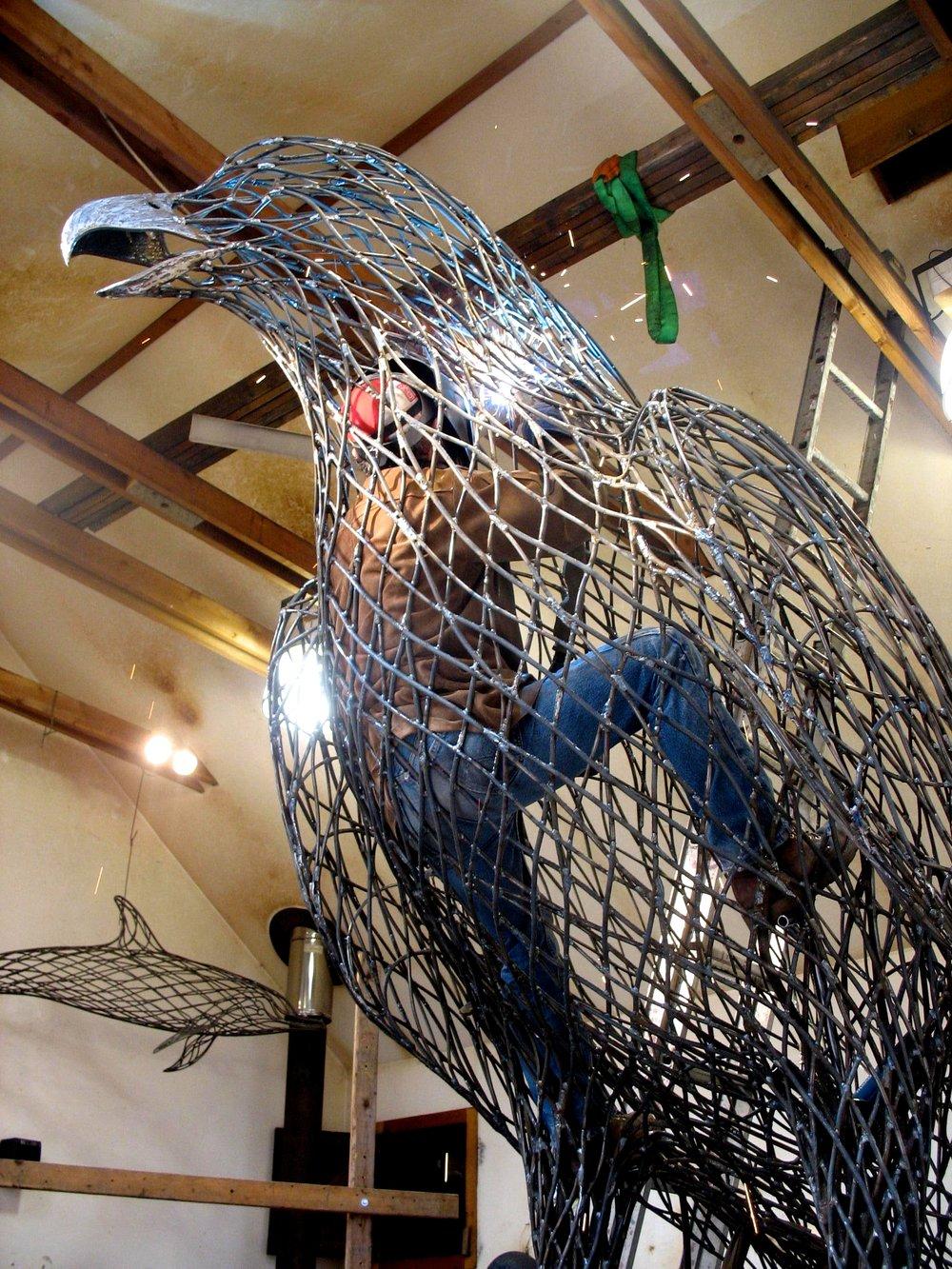 Harpy Eagle II 010.jpg
