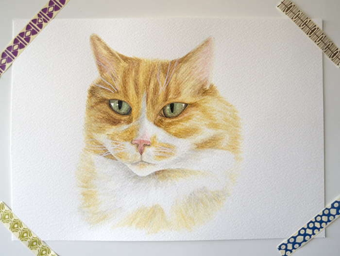 pet-portrait-etsy.jpg