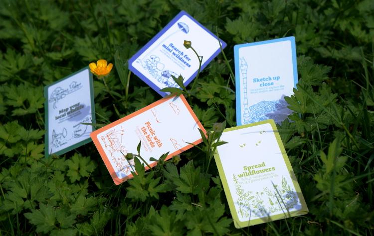 30dayswild-cards.jpg
