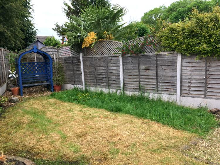 wild-garden-strip.jpg
