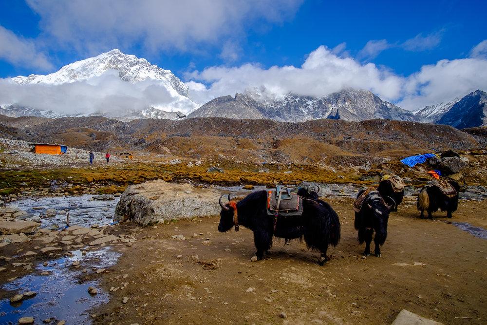 EverestTrekPart5_007.jpg