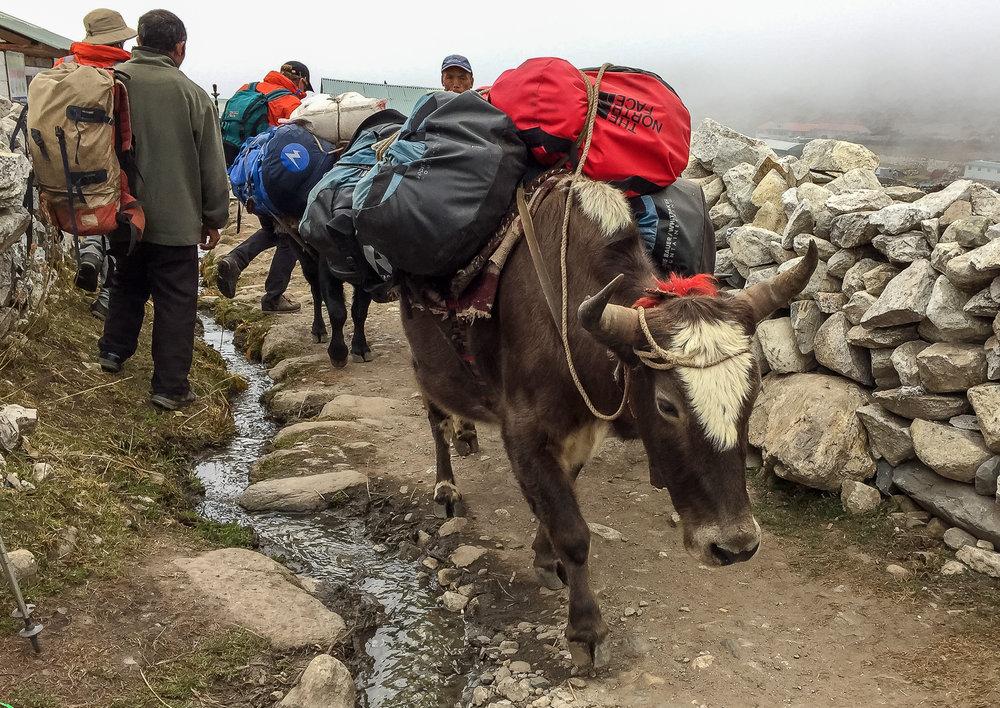 EverestTrekPart7_015.jpg