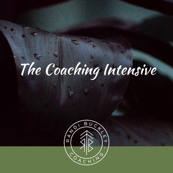 Coaching Intensive (1).png