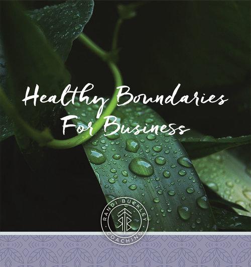 Healthy-Boundaries-for-Biz-MASTER-GRAPHIC (1).jpg