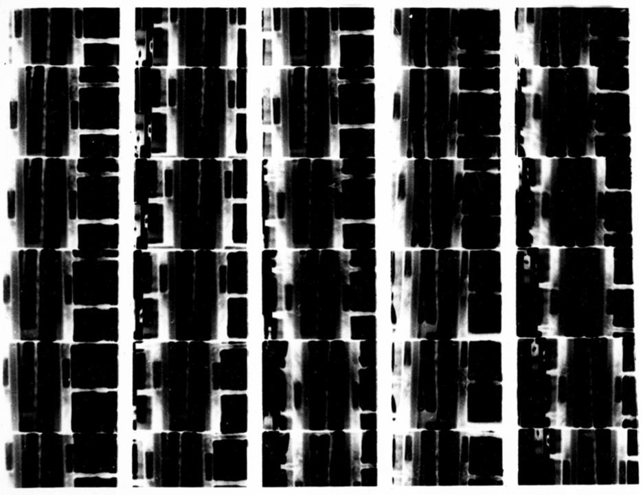 super8print4_sm.jpg