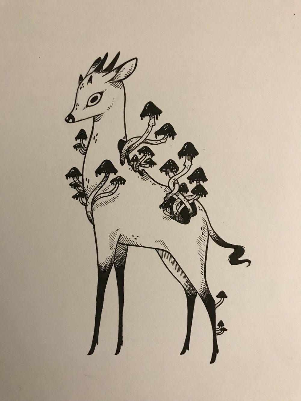 """""""Fungi"""" approx 5"""" x 7"""" Pen and Ink Original"""