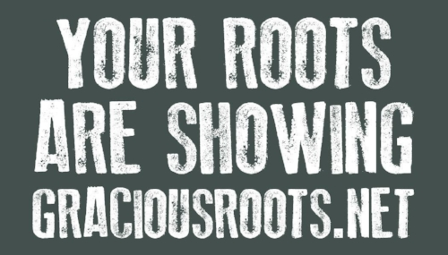 Gracious Roots Logo Color Full 3.jpg