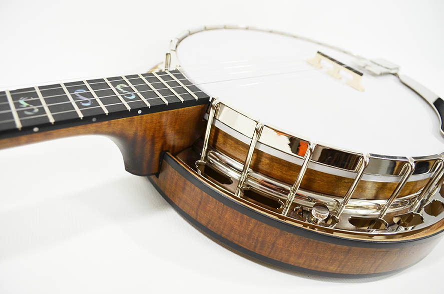 Bramble rim with resonator and flange                      (click image to see and learn more about the Bramble)