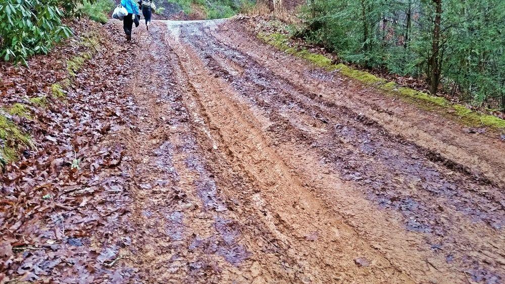 Mud Season.jpg