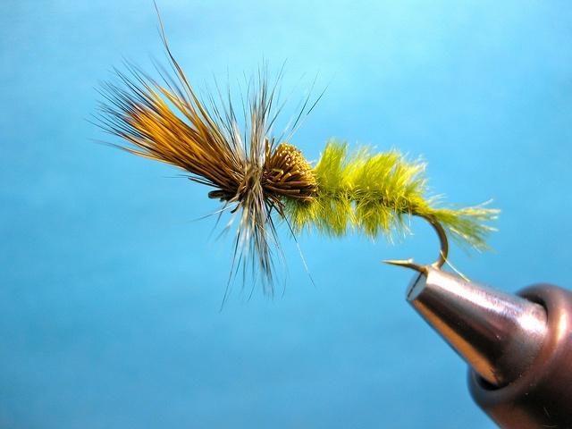 Green Drake dry fly.jpg
