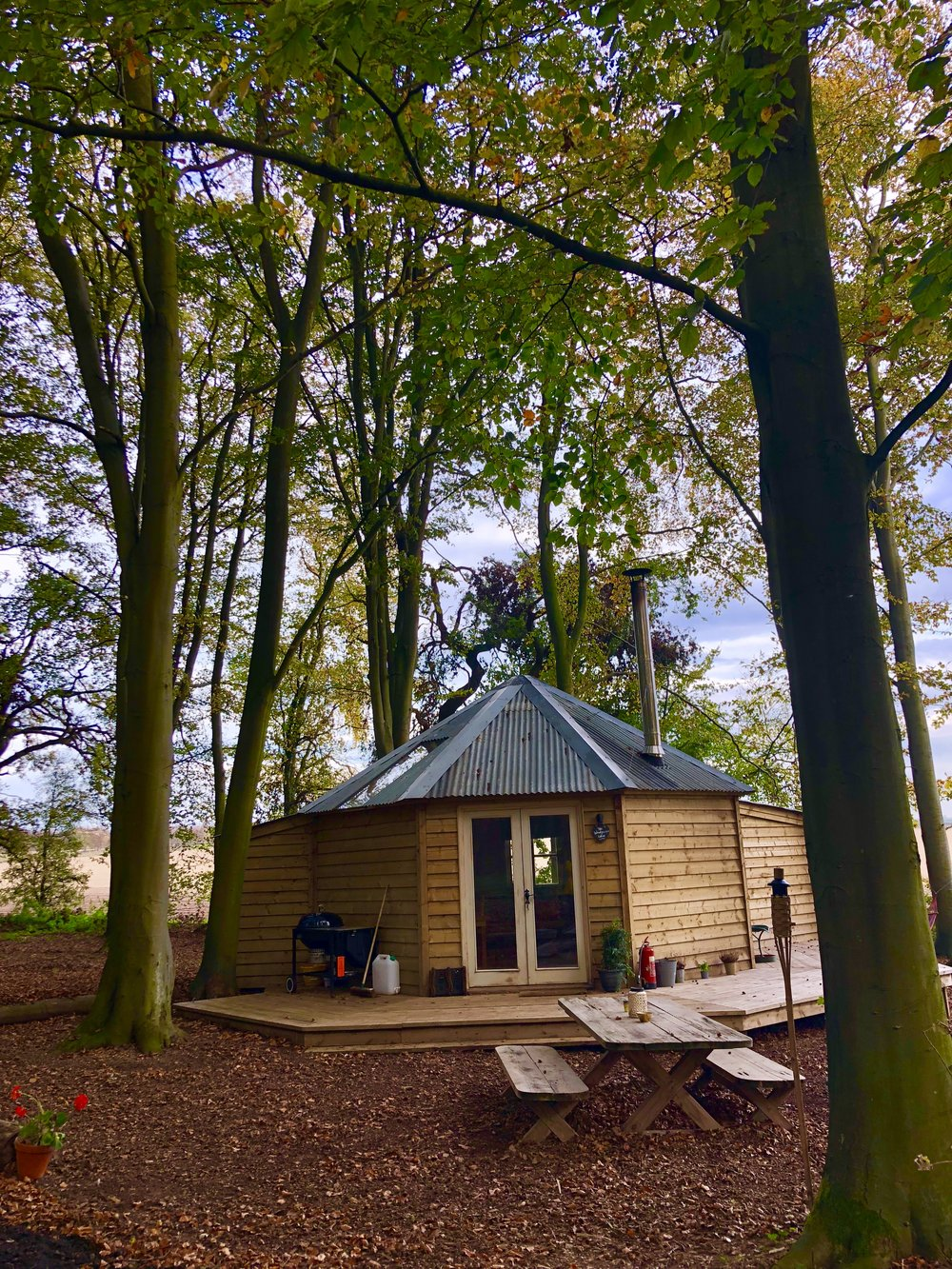 Woodpecker Tree Temple Glamping