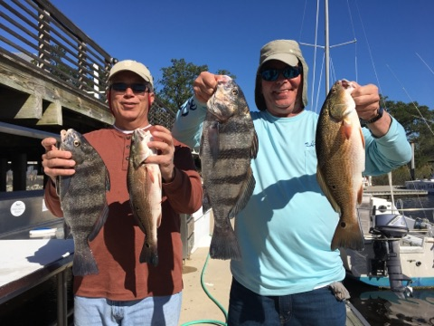 Stripped Bass Inshore Fishing Charter