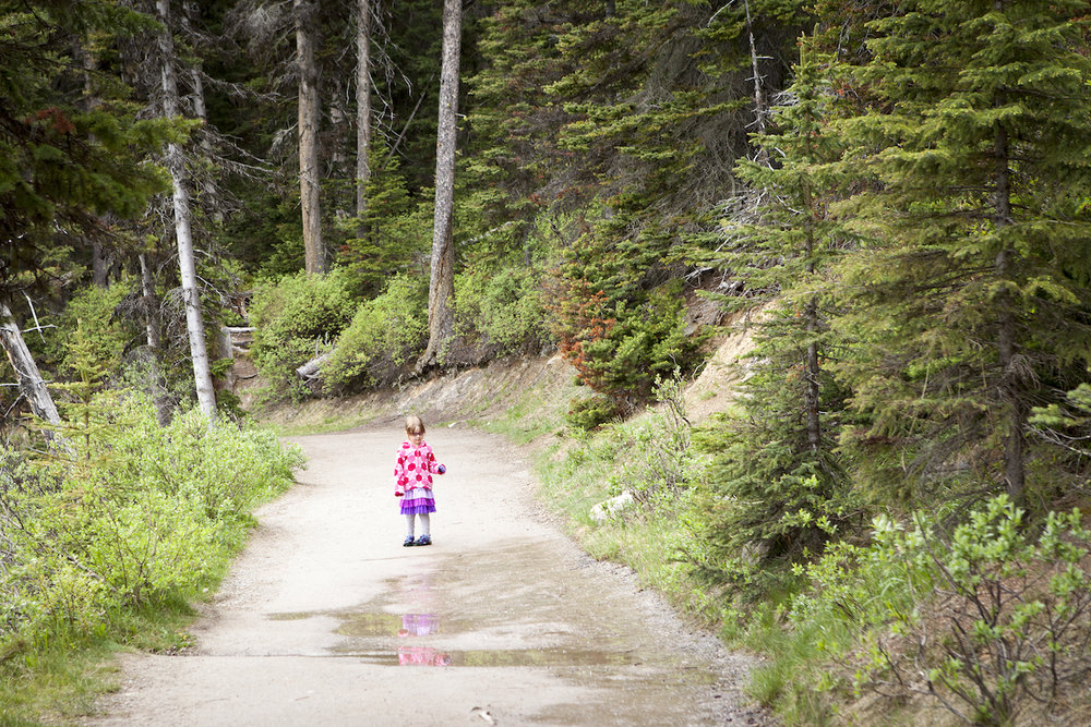 Hiking in a green forest with little daughter wearing pink