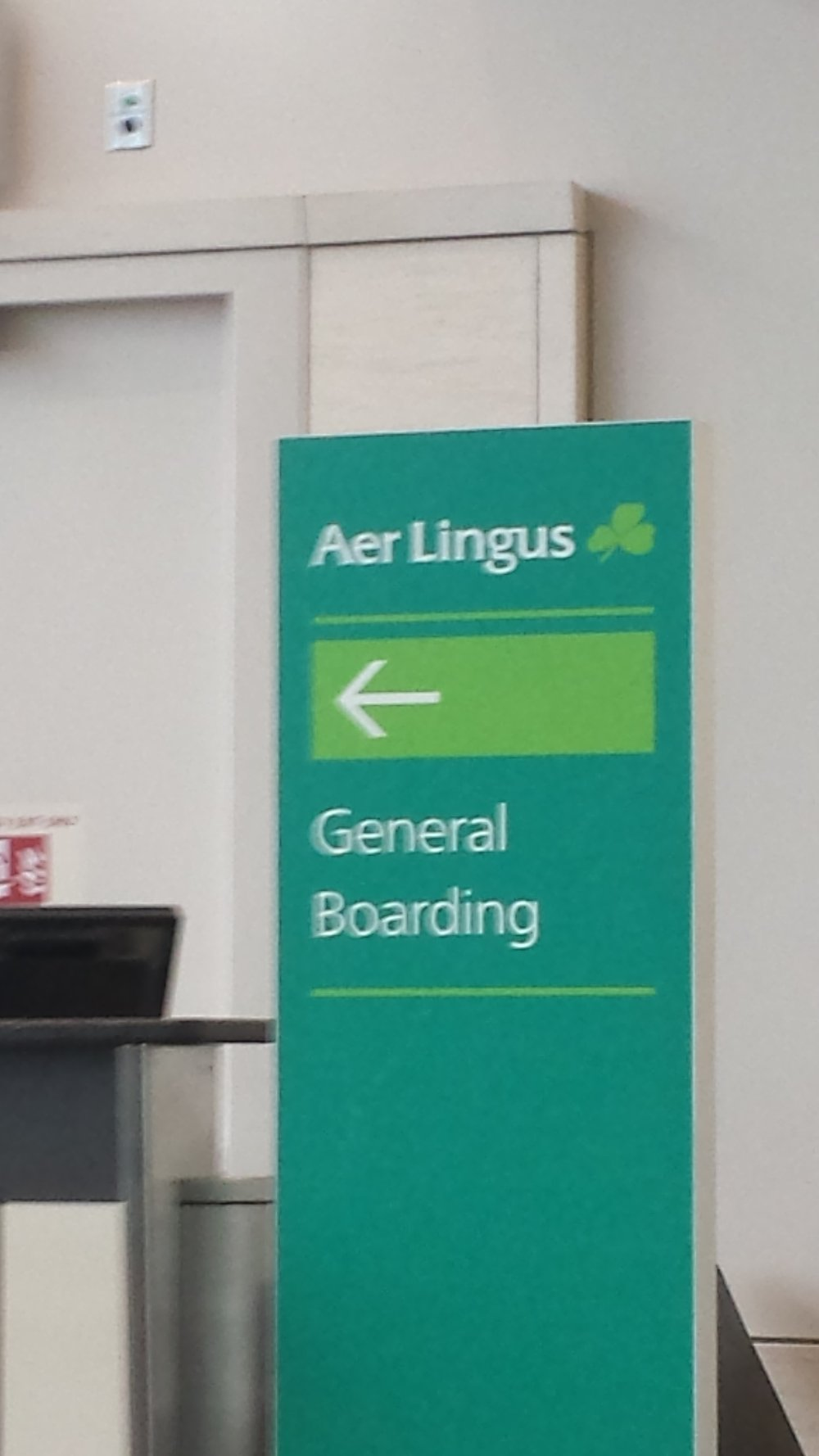 Aer Lingus provided great service!