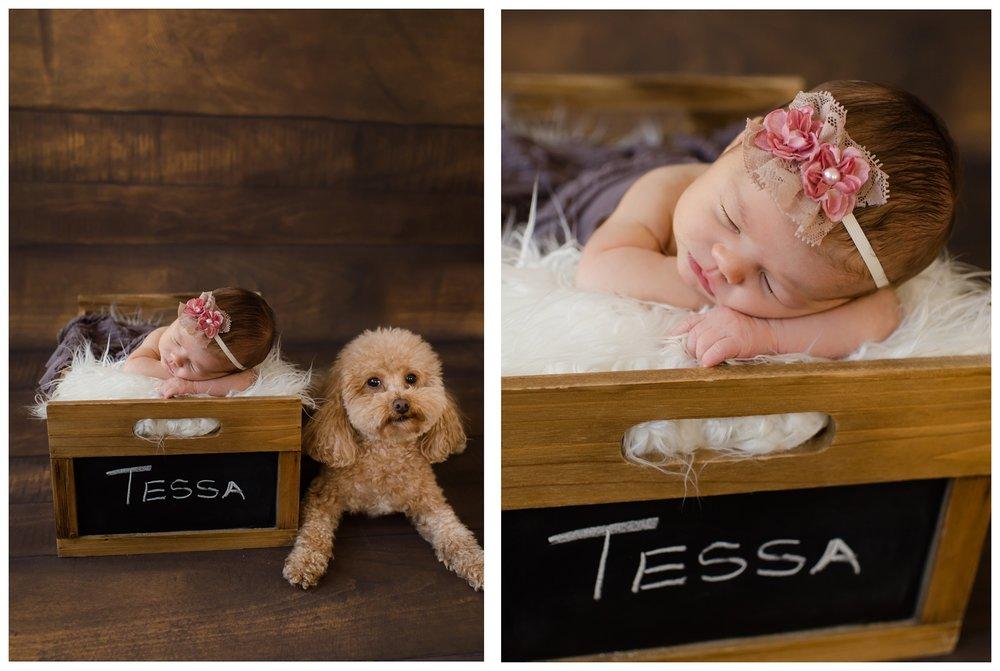 Newborn-Photographer-Sweet_Light-Portraits_0628.jpg