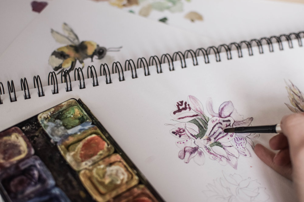 Next Project - Branding & Illustration