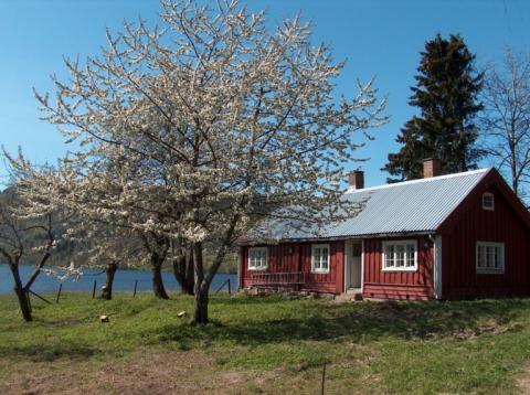 Idylliske Tangen ved Semsvannet er en gammel husmannnsplass. I Eplehagen er dette huset til den svenske gartneren Carl.