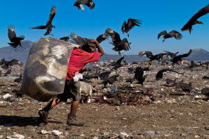 A Nicaraguan boy carries a large bag of trash for recycling while fighting with flying vultures in the garbage dump La Chureca, Managua, Nicaragua, 10 November 2004. La Chureca is the biggest garbage dump in Central America. Hundreds of trash recollectors search in tons of smouldering garbage mainly metals (copper, aluminium), others concentrate on glass which is cheap, but in bigger amount. The majority of the recyclers are families with children for whom recycling is a regular job. The children very often eat the food they find on the dump, none of them goes to school, they suffer from skin diseases, they have high levels of lead and DDT in blood. Photo by Jan Socher