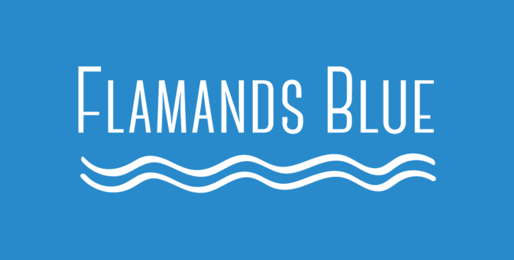 Flamands Blue – St. Bart's Villa