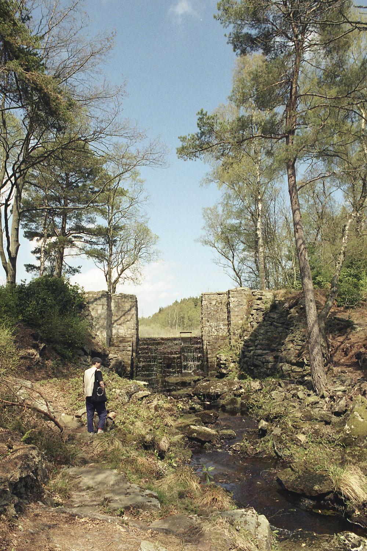 cragside1.jpg