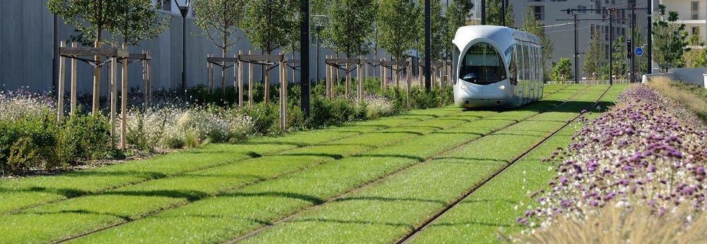 t4 tram line