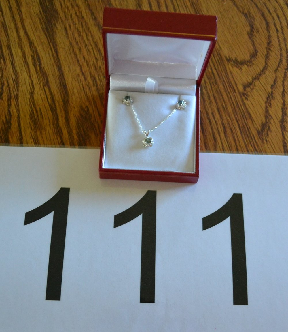 """#111 Size is 4mm studs, 18"""" pendant"""