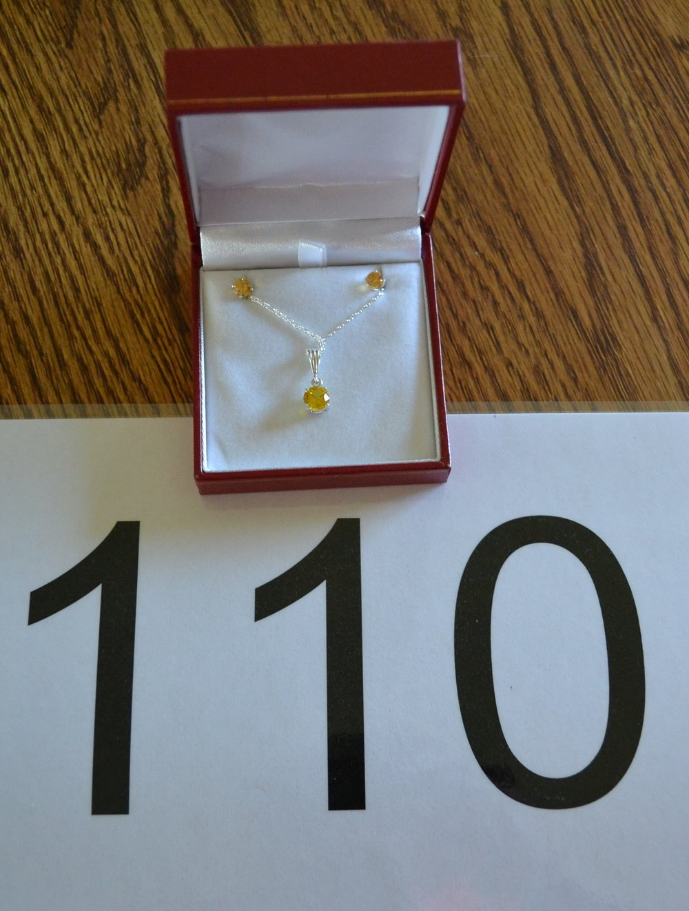 """#110  Size is 5mm studs, 18"""" pendant"""